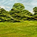 47, Rock-trees (09-02)