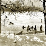 68, Snow Play In Prospect Park, (1988)