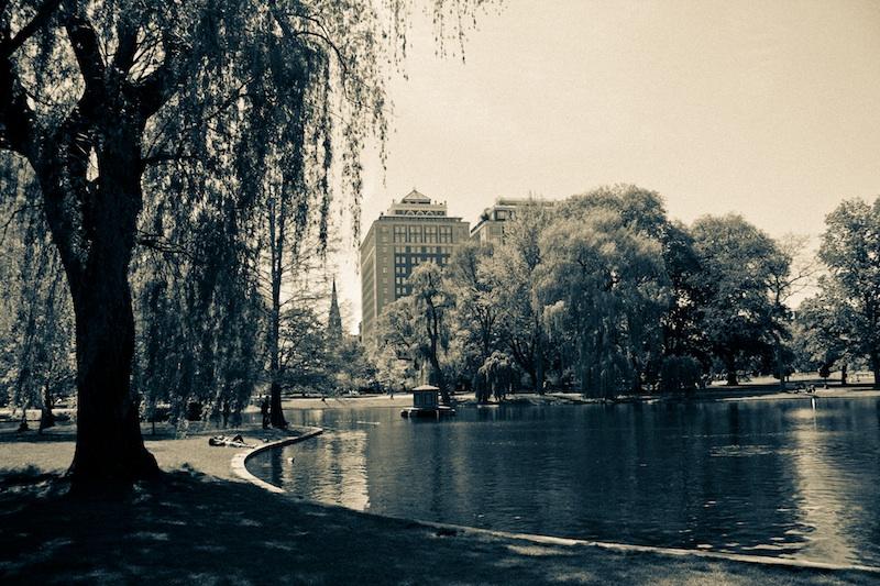 Feel Boston by Dmitry Saprykin