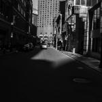 photo 12_Alexandria