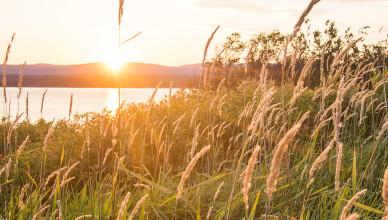 Good evening at Deer Lake