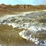 20. Nascent Salt, Barbuda
