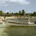 22. Barbudans Conch Blues 01-08 Codrington, Barbuda