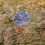 96, C. L. R. James, 1901-1989