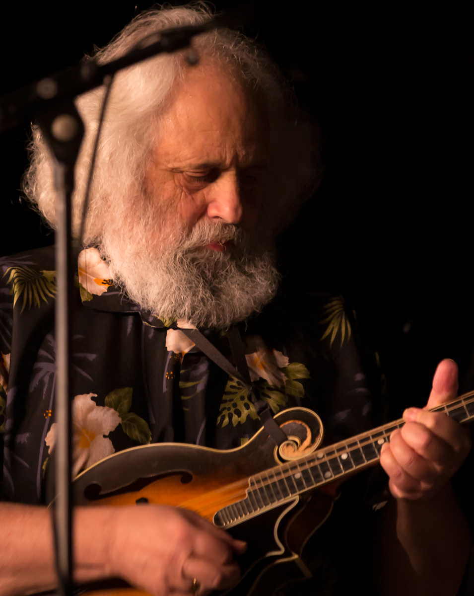 David Grisman 2016 Taken during a performance by The David Grisman Sextet at Chevalier Theatre in Medford, MA. Stage lighting can create challenges but it can also offer possibilities. Shadows on one side of his face and dark background serve to emphasize the details and color in his face and mandolin.